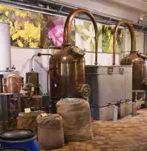 modern attar distillation